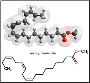 methyl linolenate